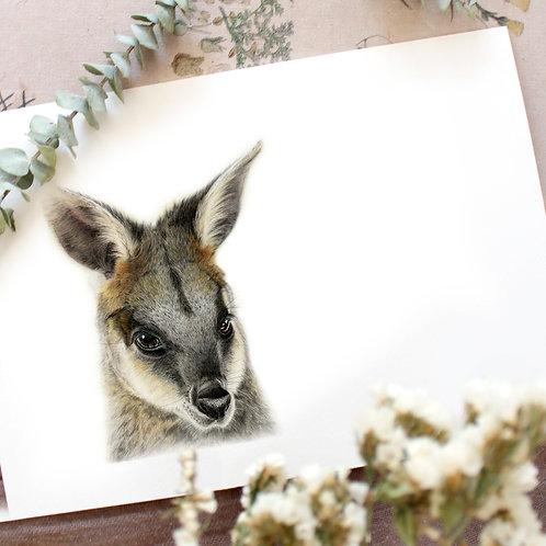 Swamp Wallaby Greeting Card
