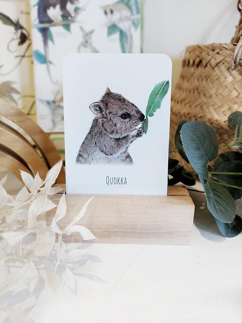 Australian Wildlife Snap & Memory Card Game
