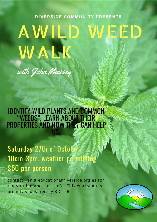 Wild Weed Walk - Medicine For Free