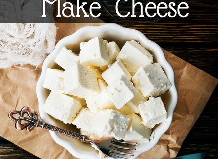 Make Fresh Cheese