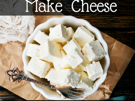 Make Fresh Cheese