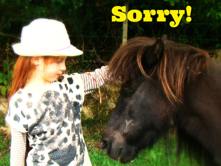 'Last Pony Rides' cancelled - due to bad weather