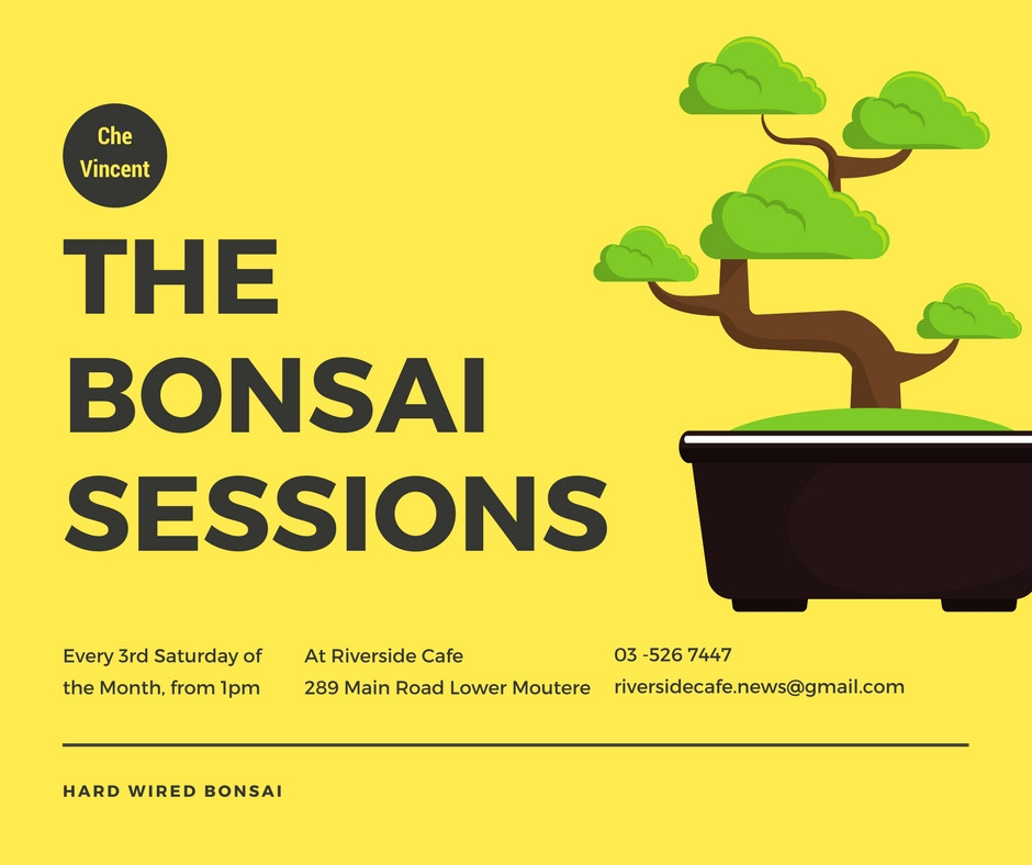 Bonsai Sessions, every 3rd Saturday, from 1pm at Riverside Cafe