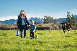 Farm Fresh Local Milk from Riverside