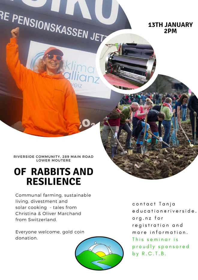 'Of Rabbits and Resilience'
