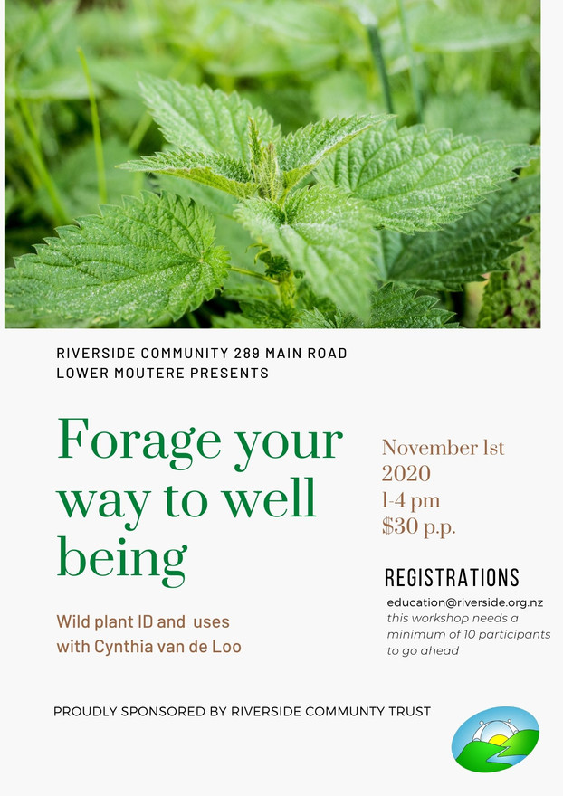 Foraging - Plant Identification & Uses