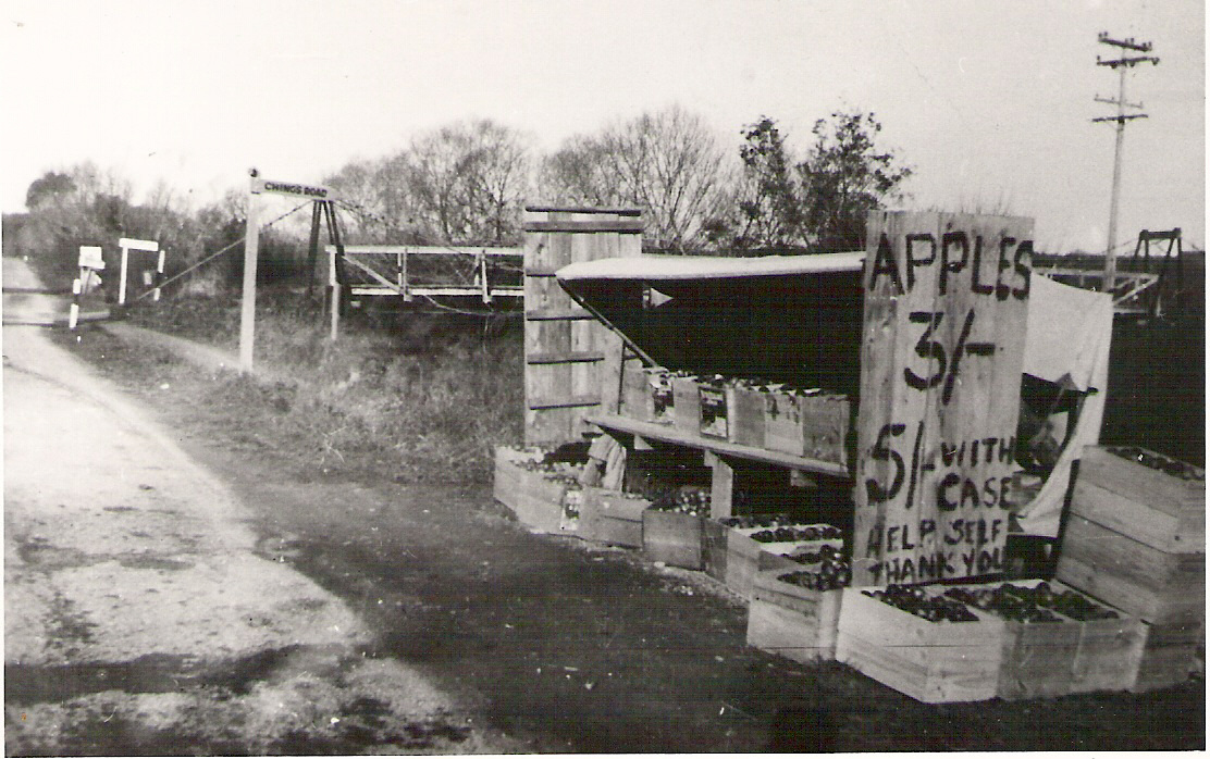 1950 First Fruit Stall