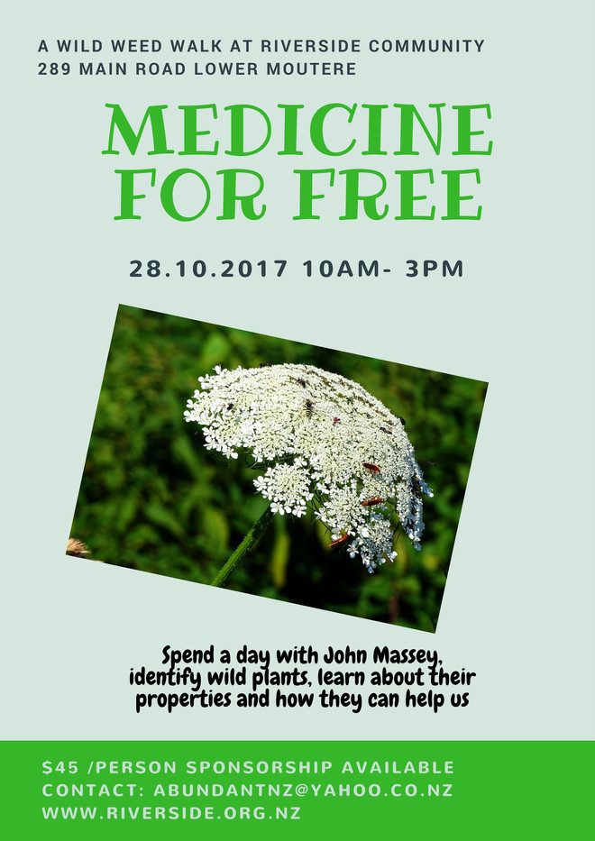 Medicine For Free - A Wild Weed Walk at Riverside