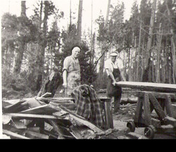 Saw Milling, 1950s