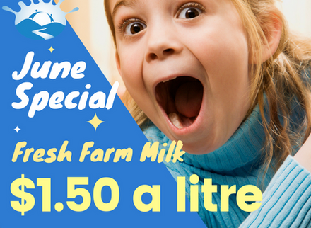 Fresh Milk for only $1.50 a Litre!