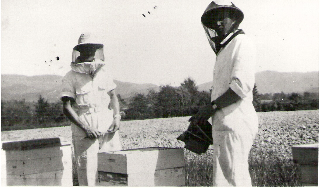 Beekeeping, 1960s