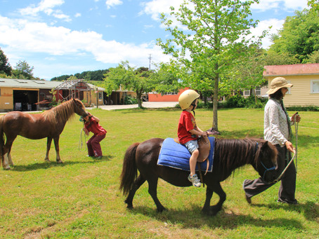Times for Pony Rides have changed