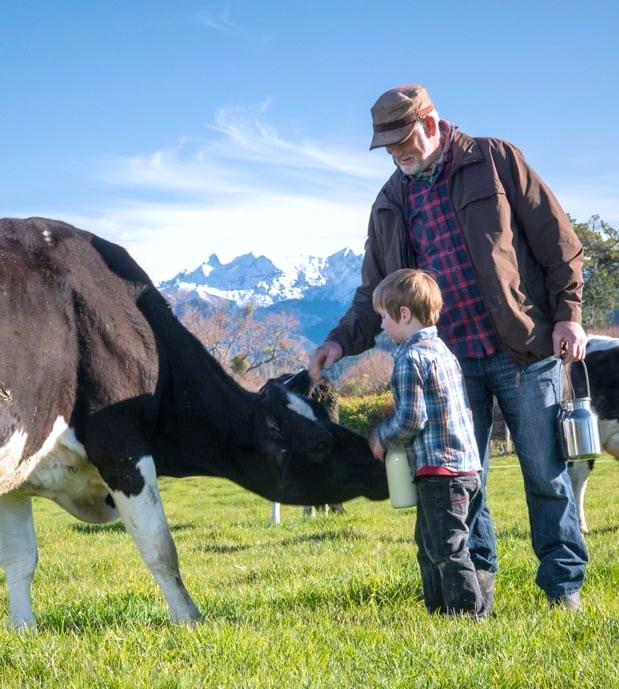 Riverside Dairy Farm, 2015