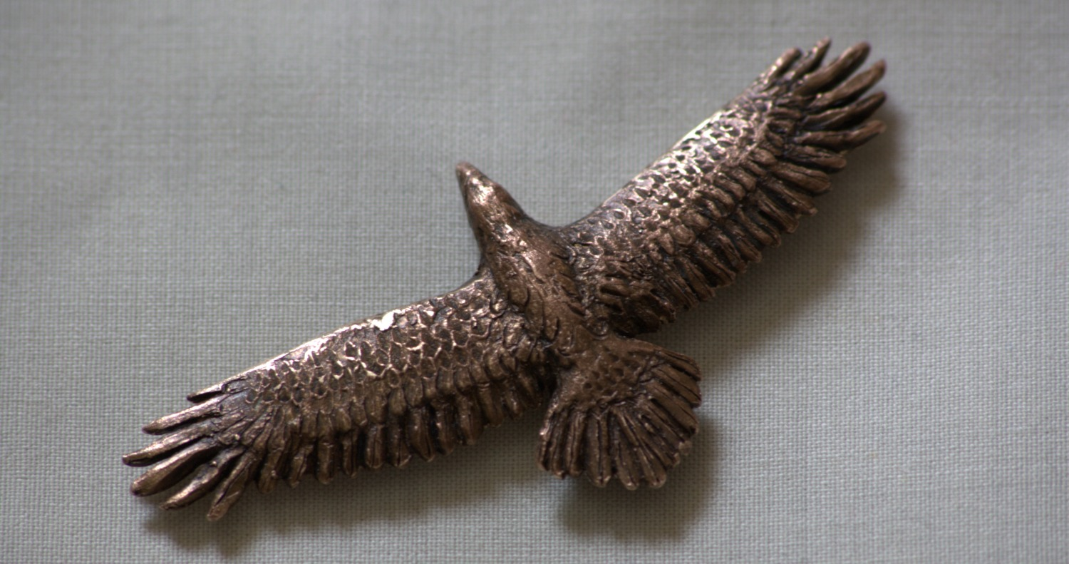 Bronze wedge-tail eagle