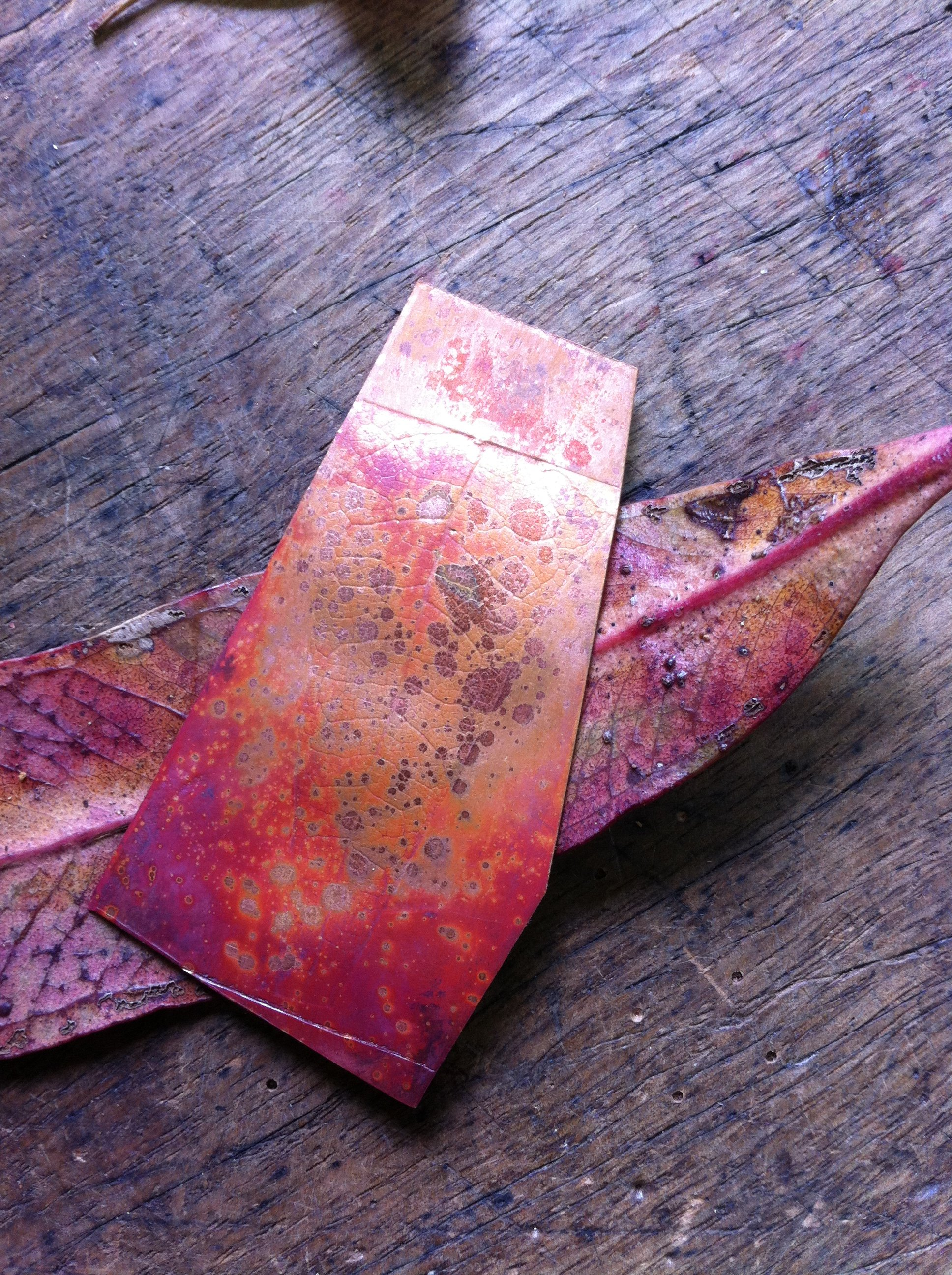 Copper and gum leaf.jpg