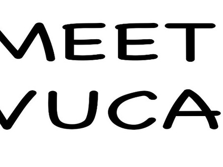 Meet VUCA. The Reason Why You Must Have an Active Career Plan