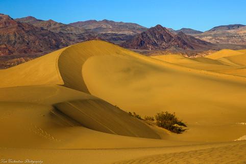 2 Sand Dunes 1.jpg