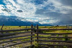 Fences meet at the Mormon barns