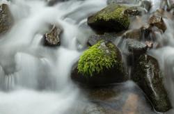 Creek falls along Sol Duc trail close up