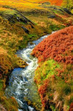 Rushing moorland waters, Elan Valley, Wales