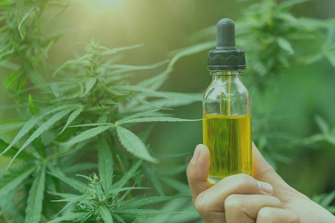 cannabissample1.jpg