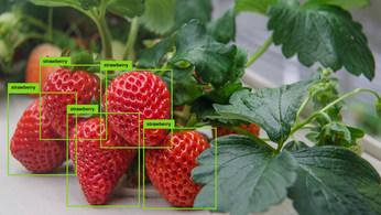 visualisierung_bilderkennung.jpg