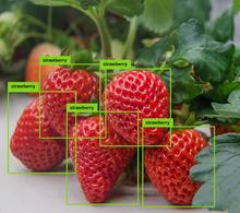 visualisierung_bilderkennung_edited.png