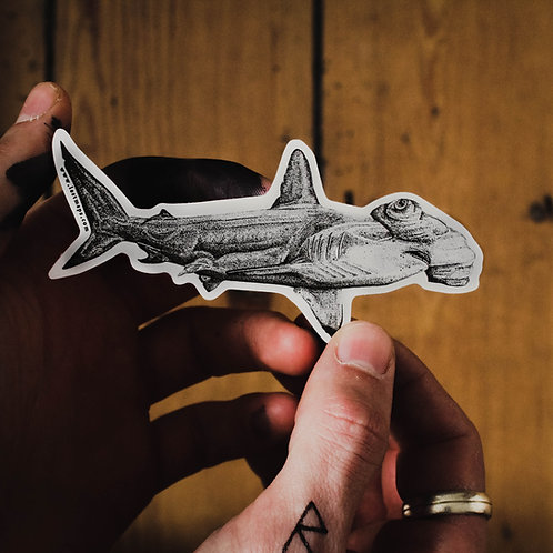 Scalloped Hammerhead Sticker