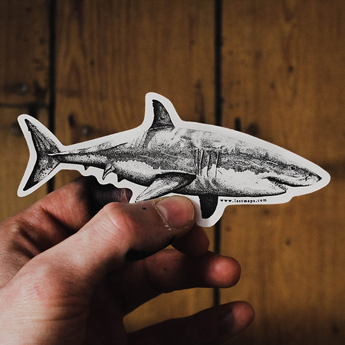 G White Shark Sticker
