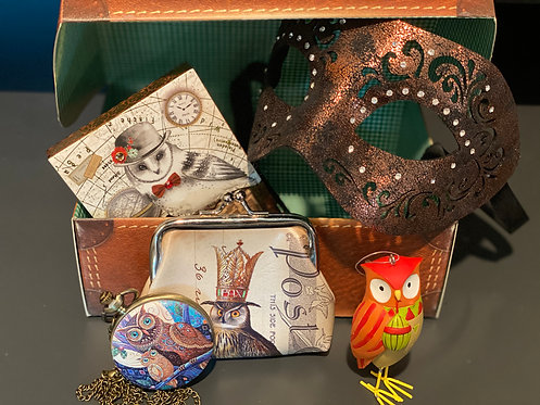 Steampunk Owl Gift Package Suitcase