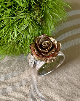 The City Of Roses Blushing Bronze