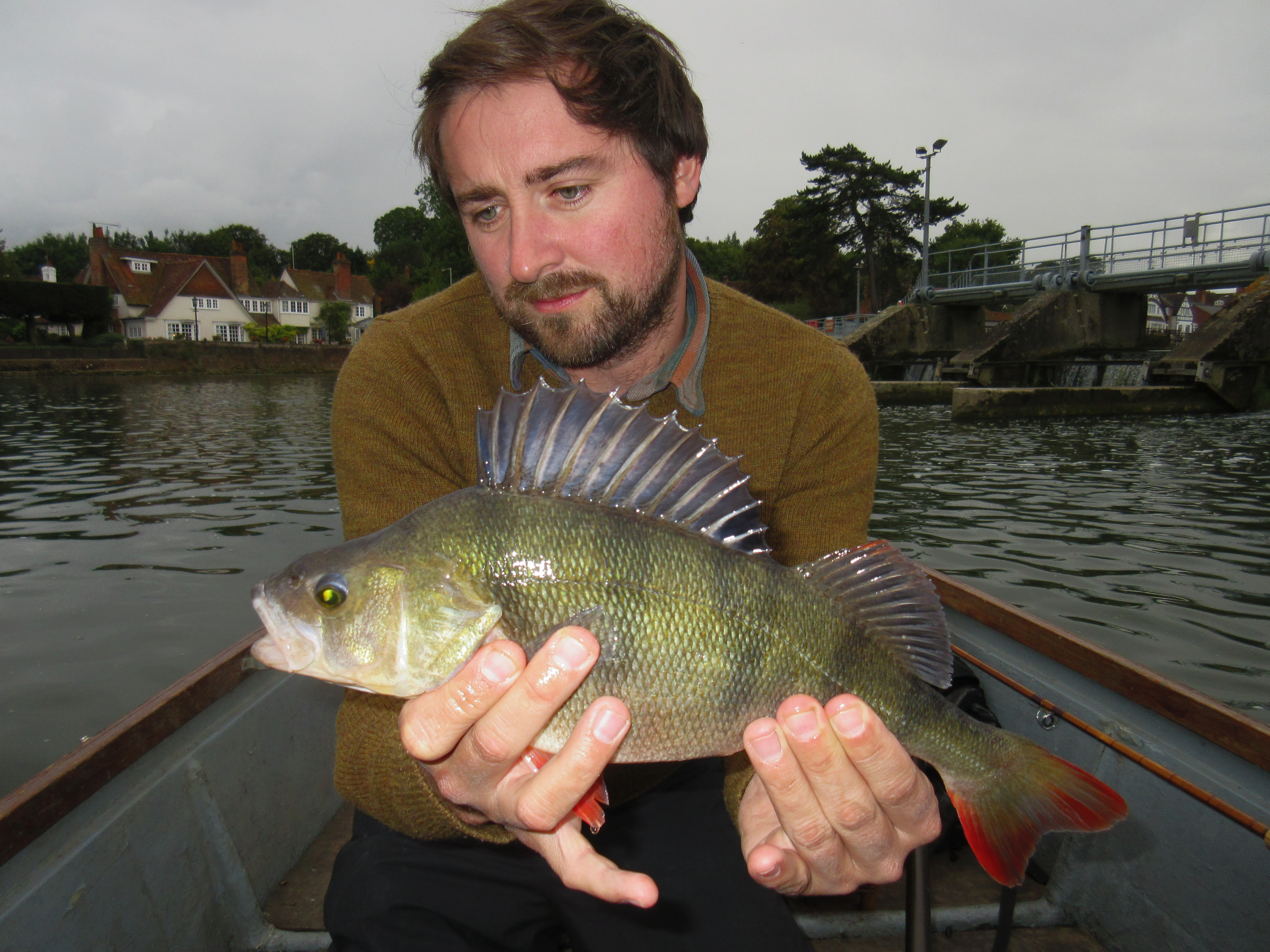 A Thames perch