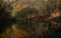 Baldwins Pond Epping