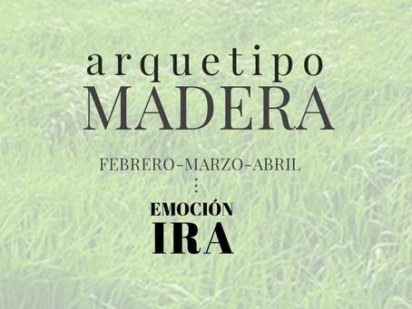 ARQUETIPO MADERA - Emoción:  IRA