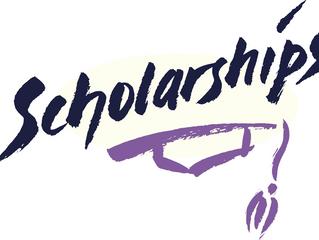 Micro Scholarships