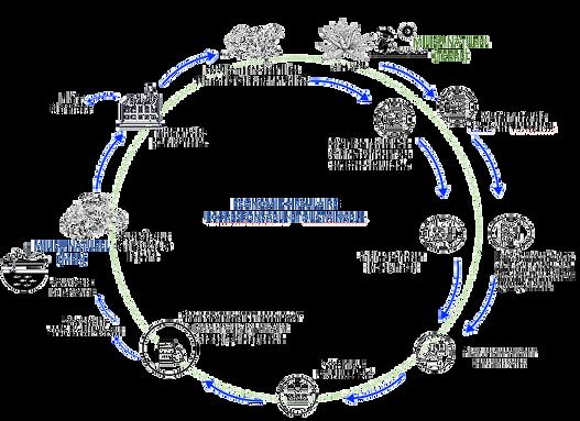 Cycle de Fabrication de SEACATRIX - 16 A