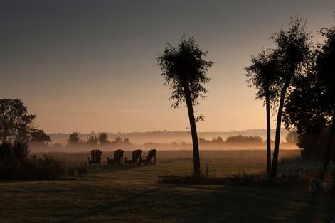 Sunrise in aWarwickshire Garden