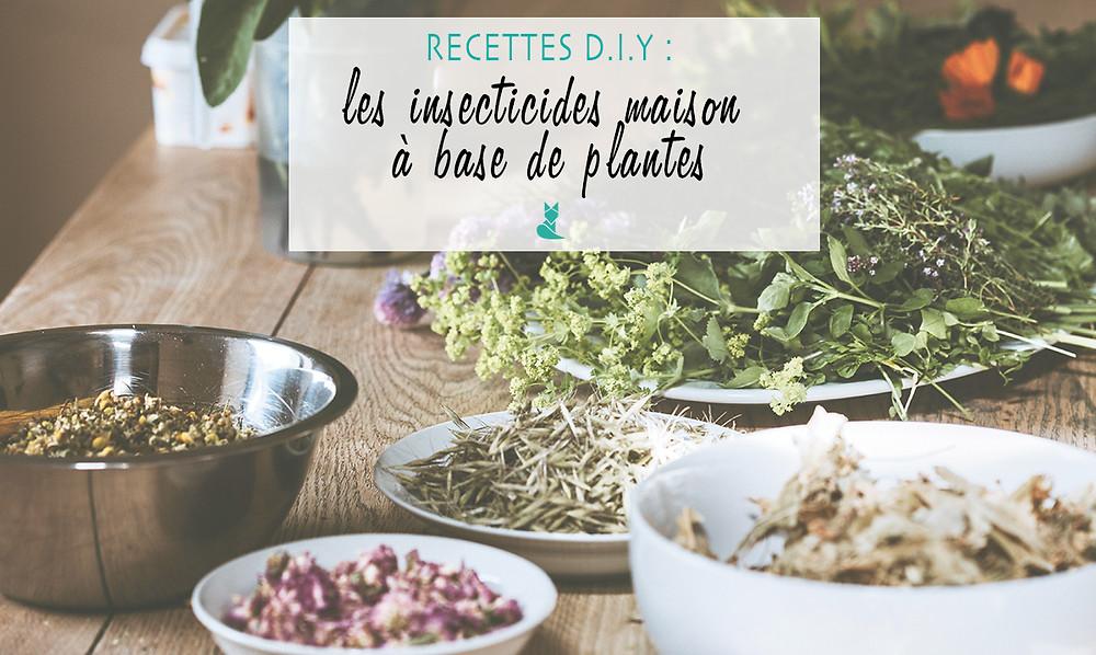 recettes DIY