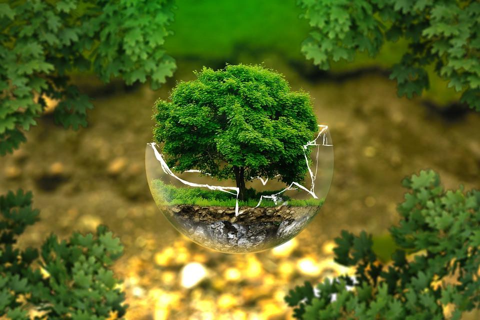 developpement durable voyage tookki voyageons autrement