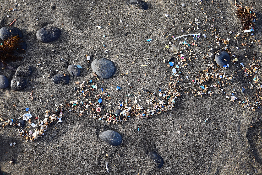 microplastiques pollution ocean