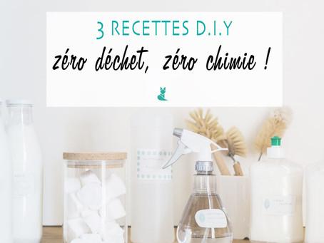 3 recettes Do It Yourself : 0 déchet & 0 chimie !