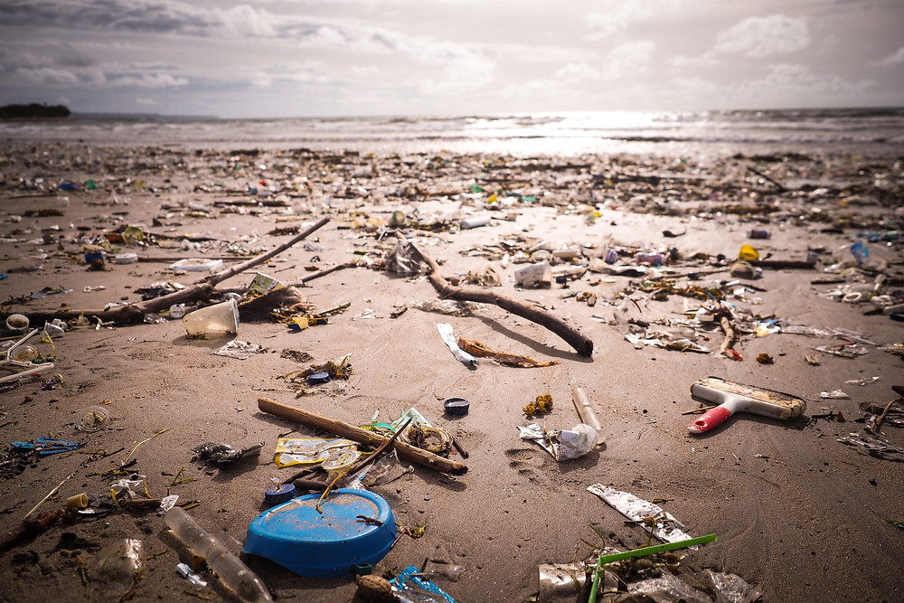 microplastiques pollution plage ocean effets sante