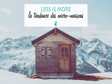 LESS IS MORE - La tendance des micro-maisons.
