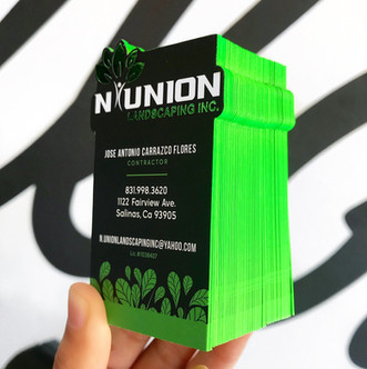N Union Landscaping Inc.