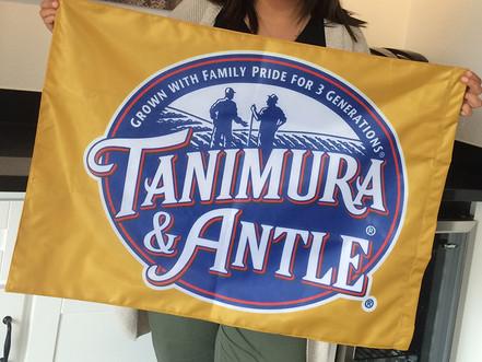 Tanimura & Antle