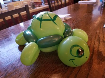 Turtle balloon animal