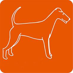btn_Irish_Terrier.png