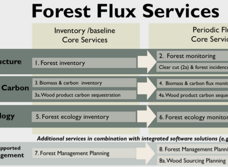 Forest Flux:  a first of its kind carbon analysis