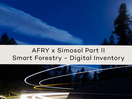 Digital inventory of the forest - Exact information instead of averages