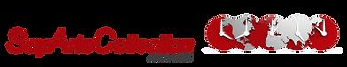 sayarts_collection_logo(1).png
